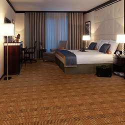 Style 302 Hospitality Guest Room Carpet