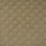 Style 340 Hospitality Carpet Color Driftwood