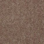 Dyersburg 53755 Builders Carpet 55752 Candied Truffle
