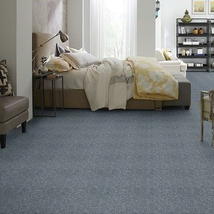 Intrigue II Builders Carpet Color