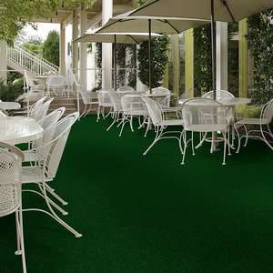 Tactic (T) 54591 - Indoor Outdoor Grass Carpet | Shaw