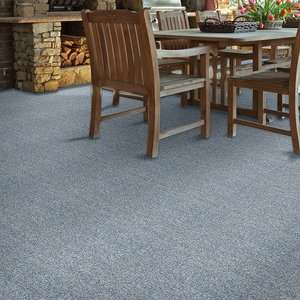 Arbor View (T) 54625 Indoor Outdoor Grass Carpet by Shaw Carpets