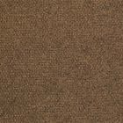 54695 Succession Shaw Carpet Tiles