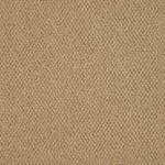Style 54741 Gather EPBL Commercial Carpet