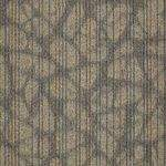 54755 Warp It Shaw Modular Carpet Tiles