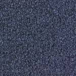 Style New Basics II 28 BC266 Commercial Carpet
