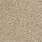 Carefree II Builders Carpet Color 00103