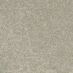 Carefree II Builders Carpet Color 00105