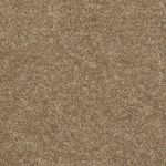 Carefree II Builders Carpet Color 00202