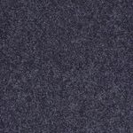 Carefree II Builders Carpet Color 00410