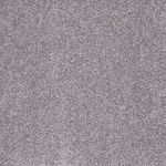 Carefree II Builders Carpet Color 00501