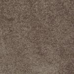 Carefree II Builders Carpet Color 00702