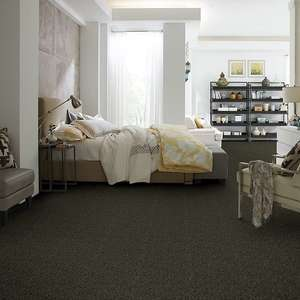 Carefree II Builders Carpet