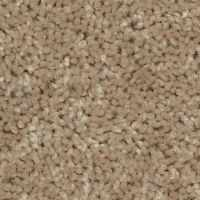 Residential Carpet Carefree II Color 00107