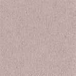 Cavalier Builders Carpet Color Real Taupe
