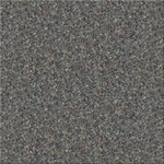 Endurance 26 Commercial Carpet Color 5076
