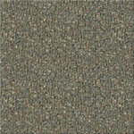 Endurance 26 Commercial Carpet Color 5077