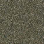 Endurance 26 Commercial Carpet Color 5078