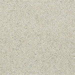 52N89 Essay II Builders Carpet 00102 Cloud