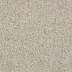 52N89 Essay II Builders Carpet 00107 Heavenly