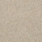 52N89 Essay II Builders Carpet 00108 Classic Cream