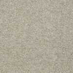 52N89 Essay II Builders Carpet 00116 Sand Dollar