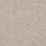 52N89 Essay II Builders Carpet 00153 Sheer Ecru