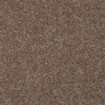 Intrigue II Builders Carpet Color Moccassin