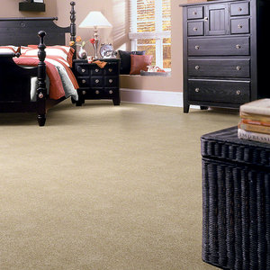True Winner Builders Cut Pile Broadloom Carpet