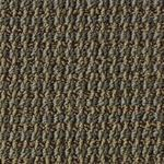 Style Point of Interest BQ201 Commercial Carpet