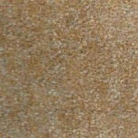 Style R8199 Residential Carpet Special