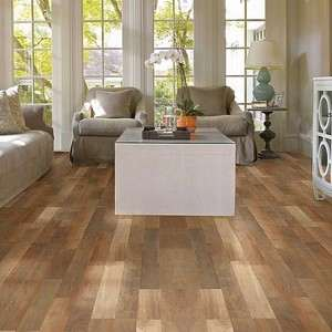 SL305 Landscapes Plus Shaw Laminate